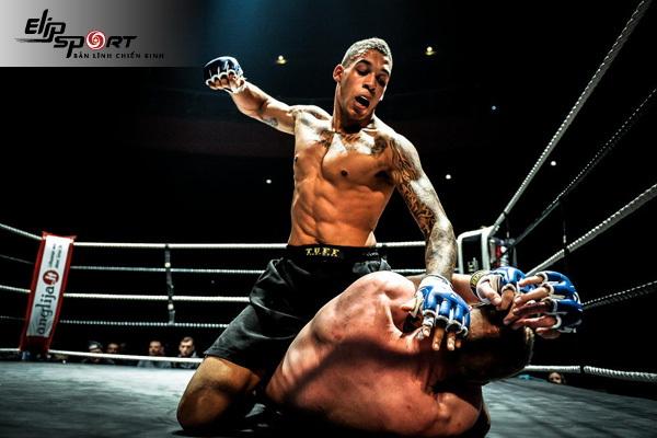 MMA là gì