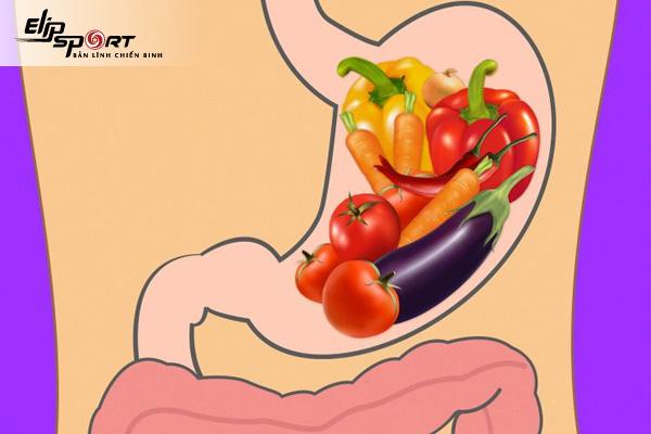 Thời gian tiêu hóa thức ăn của cơ thể là bao lâu