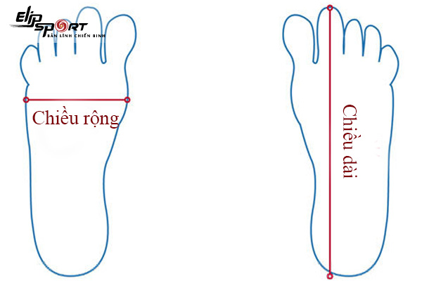 cách đo size chân cho bé