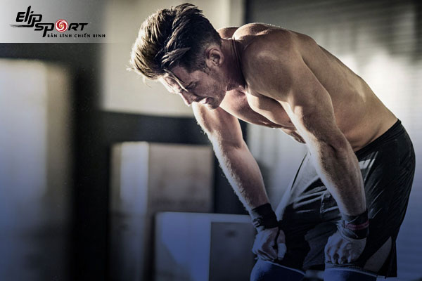 pre workout là gì