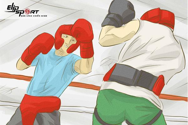 boxing cho người mới tập