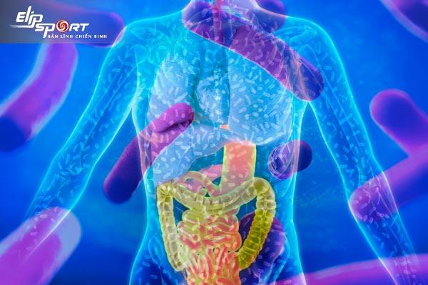 microbiome là gì