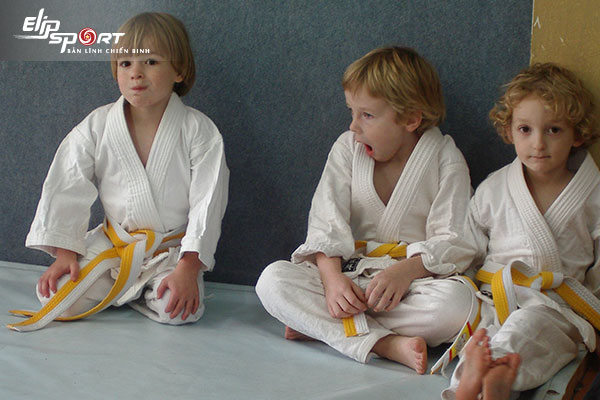 Judo là gì