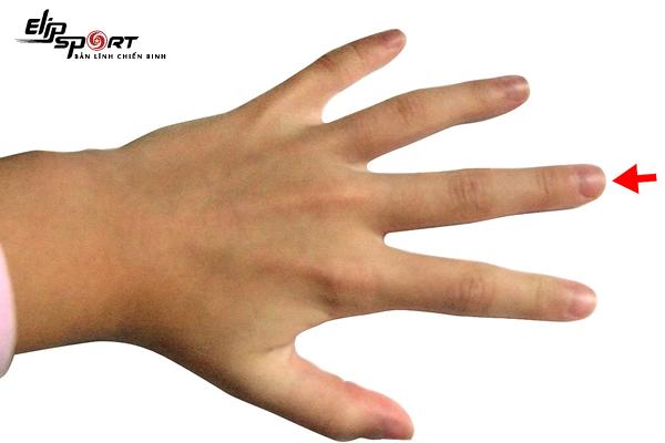 độ dài ngón tay