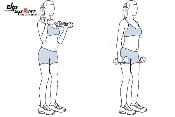 số đo bắp tay chuẩn nữ