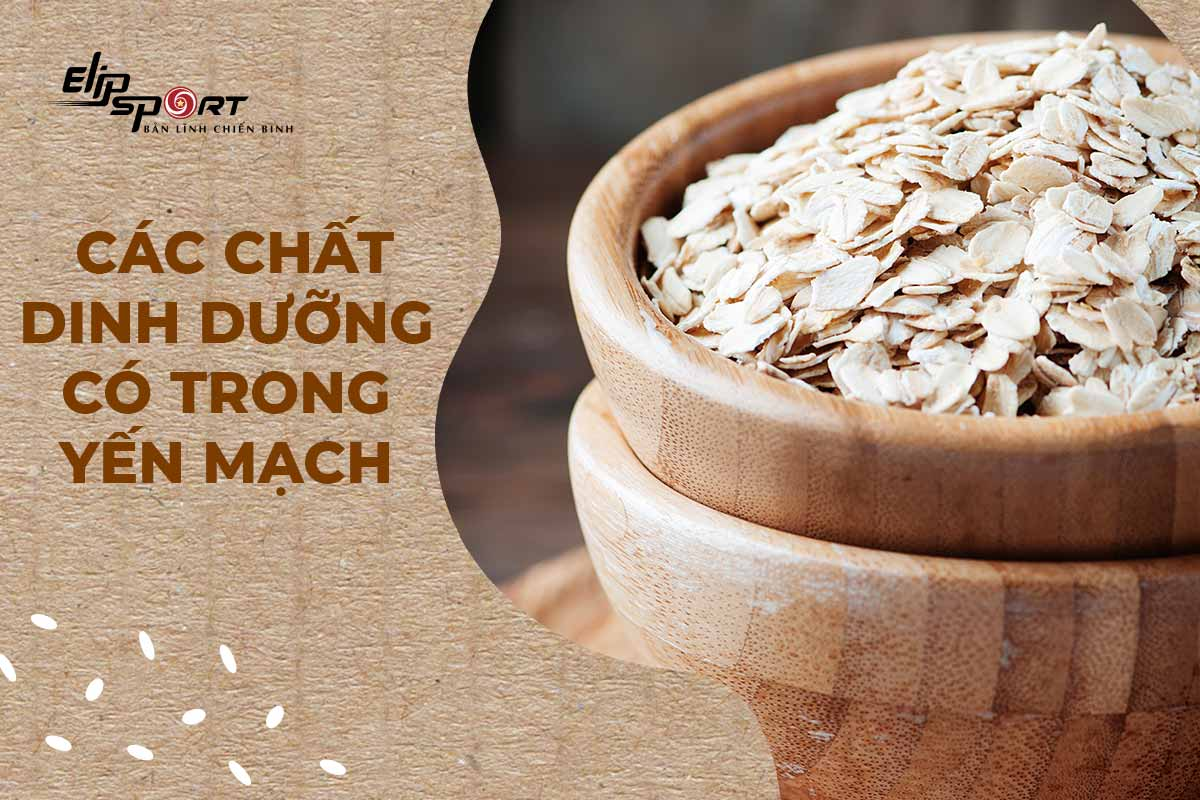 protein trong yến mạch