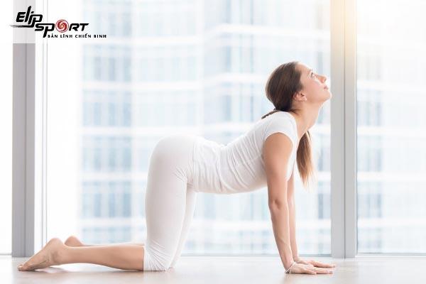 Yoga tăng sức đề kháng