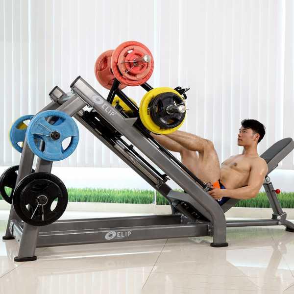 Ảnh sản phẩm Máy đạp đùi xiêng Elip YL26 New