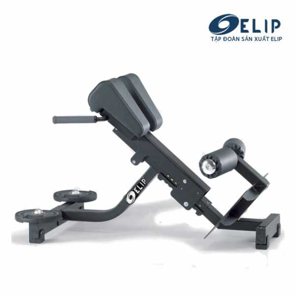 Ghế tập lưng ELIP OLY102