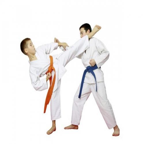 Trong võ karate có mấy đai? Các màu đai của karate
