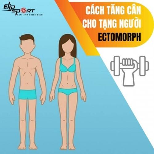 Bật mí cách tăng cân cho tạng người ectomorph