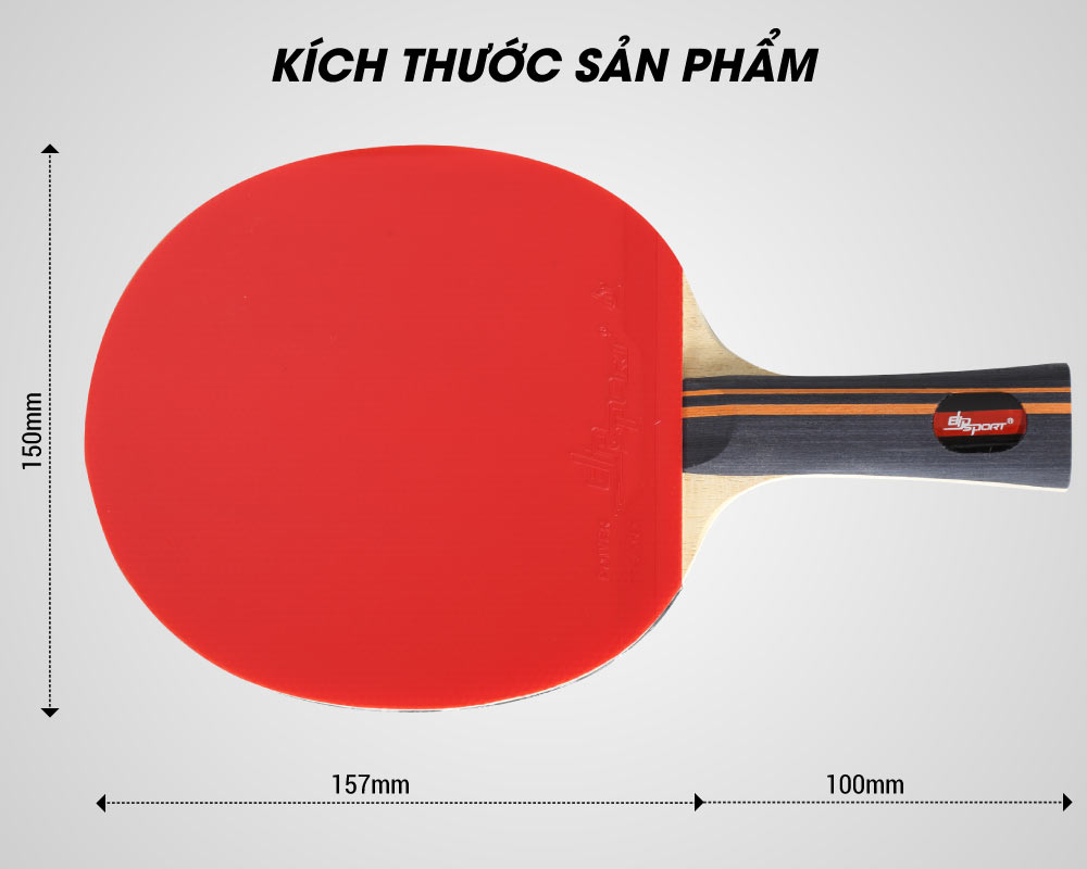 kích thước vợt bóng bàn elip tempo 3 star