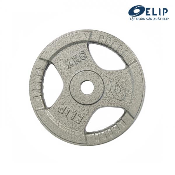 Ảnh sản phẩm Tạ Gang Elip Rubic Phi 28-2Kg