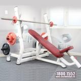 Ảnh sản phẩm Ghế đẩy ngực trên Elip AC015