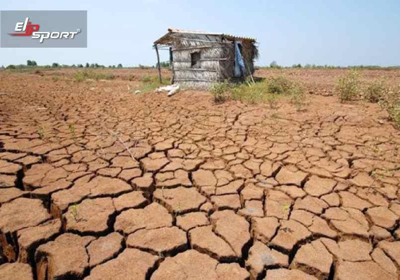 Người dân bị mất trắng cánh đồng lúa